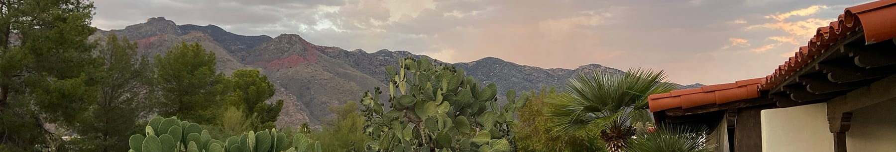 Tucson's Catalina mountains with rooftop and shrubs